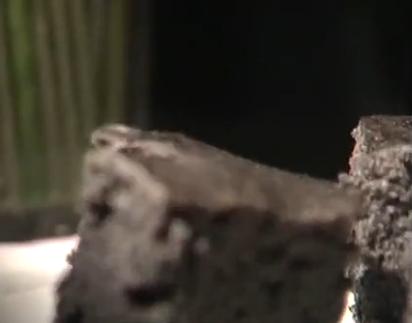 补肾黑米糕